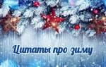 Прикольные статусы про зиму. Цитаты про зиму. Январь, февраль, декабрь. ТОП — 100 лучших!