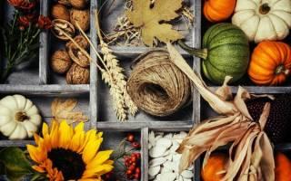 Картина из природного материала «Осенняя радость».