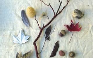 Осенняя фея из природных материалов: