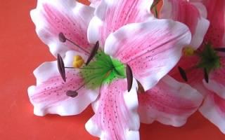 Видео уроки. Цветы из фоамирана. Лилия. Мастер-класс