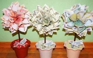 Топиарий денежное дерево.