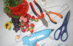 Парящая кружка из фруктов и цветов. Мастер — класс