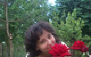 Картина в технике айрис фолдинг. Тюльпаны в вазе. Мастер-класс