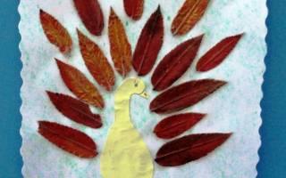 Аппликации из листьев своими руками. Птица.
