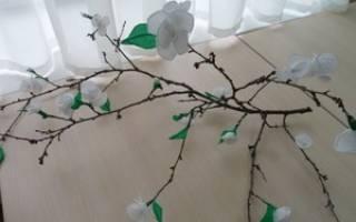 Дерево из бумаги. Мастер класс