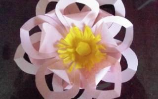 Мастер-класс. Ажурное сердце в цветах в техники киригами