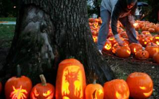 Тыква на Хэллоуин своими руками. Как украсить, задекорировать тыкву? ТОП — 100 лучших идей