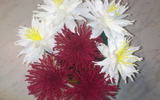 Цветочки из креповой бумаги для бабушки. Мастер-класс