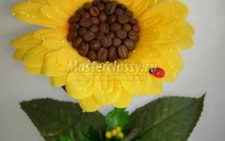 Мини-топиарий из искусственного цветка и зерен кофе. Подсолнушек.