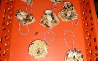 Яблочно-зерновая кормушка для птиц: пошаговый мастер-класс