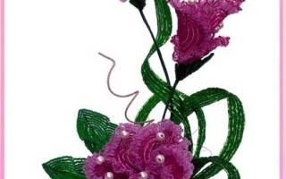 Цветы из бисера. Гибискус.