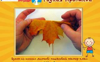 Букет из листьев дикого клена «Праздник осени». Мастер класс с пошговыми фото
