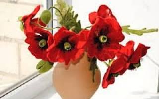 Валяние из шерсти. Декоративный цветок. Мастер-класс