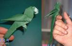 Оригами птицы. Попугай.