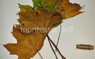Роза из листьев своими руками.