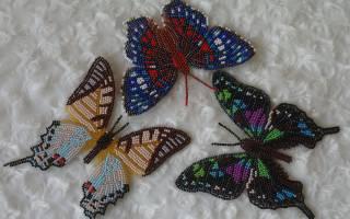 Красивая бабочка из бисера. Схема