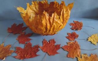 Поделки из природных материалов. Осенняя ваза.