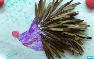 Картина из природных материалов. Весёлый ёжик.