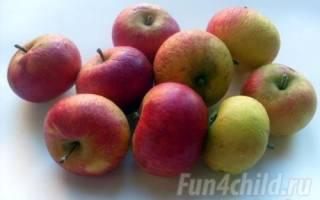 Поделки из фруктов и ягод. Яблочный венок. Мастер класс