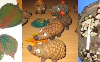 Поделки из природных материалов в детский сад: лучшие идеи с фото