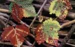 Украшения из бисера своими руками. Мастер-класс по изготовлению комплекта «Листья»