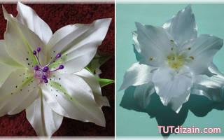 Цветы из нажелатиненной ткани. Веточка лилии.