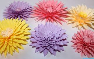 Бумагопластика для детей. Цветы.