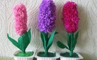 Цветы из гофрированной бумаги для мамы. Гиацинты.